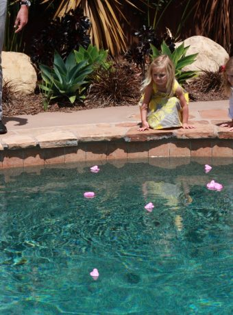 Peeps race in a pool is a fun Easter activity for families and friends.