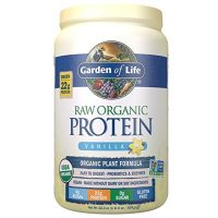 Raw Vegan Protein Powder