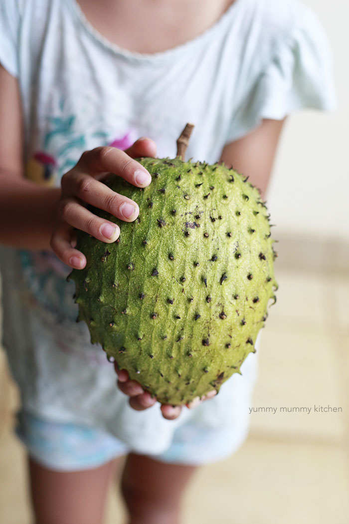 soursop tropical fruit