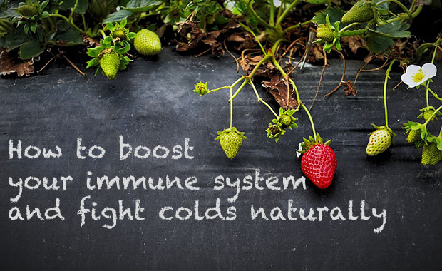 Boosting Immune System Before Travel