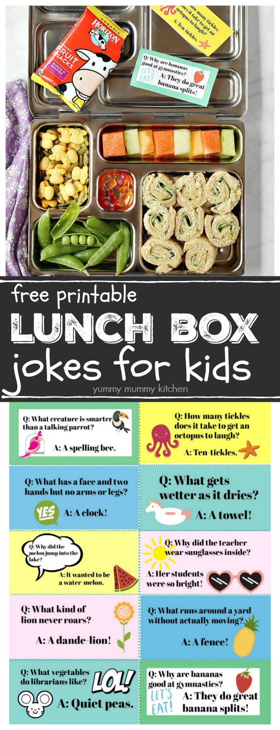 image relating to Lunch Box Jokes Printable identify Lunch Box Jokes Cost-free Printable