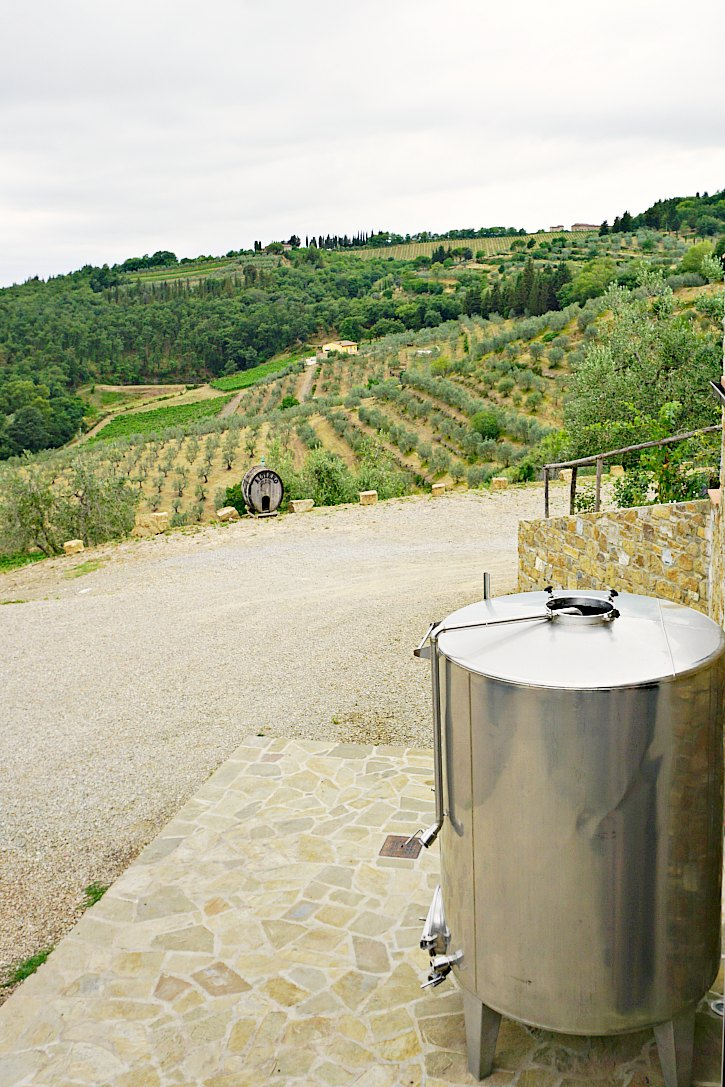 Altiero Winery is a wonderful place to taste wine and olive oil in Tuscany.