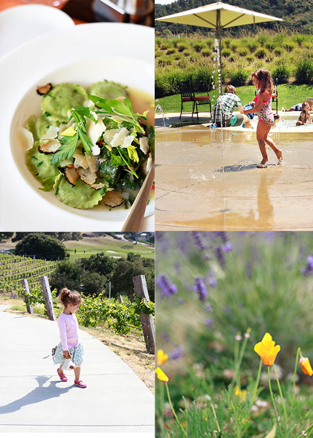 Carmel Ca Family Vacation Ideas