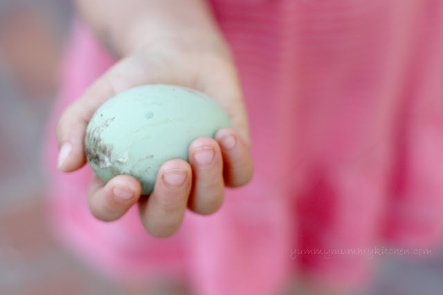 Child's hand holding a green Ameracauna chicken egg.