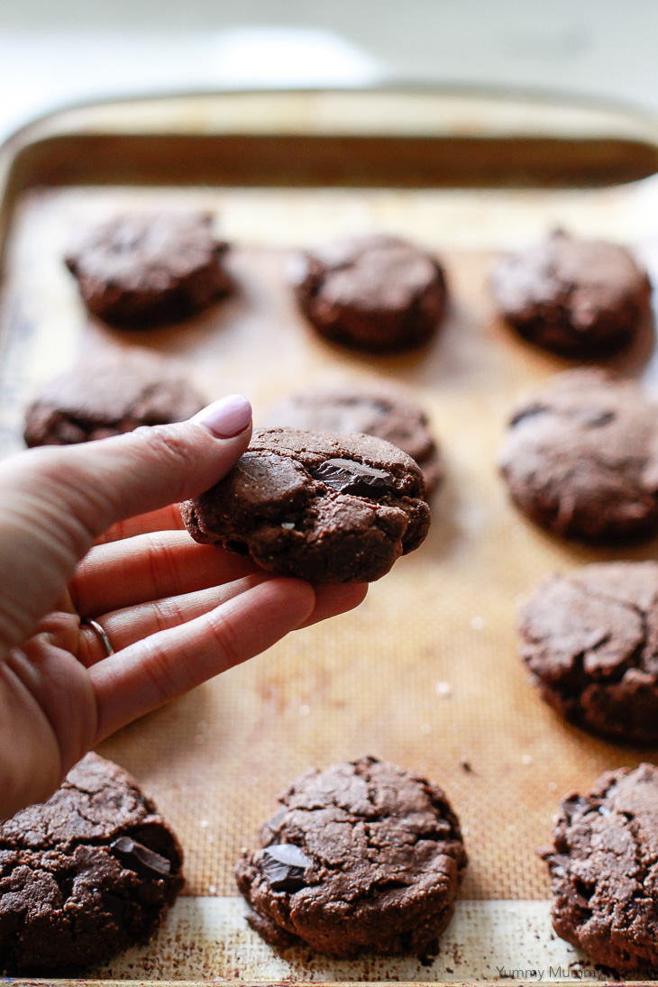 Chocolate cookies with chocolate chunks. These paleo, vegan, and gluten-free chocolate cookies are made with healthier ingredients like almond flour, almond butter, and coconut flour.