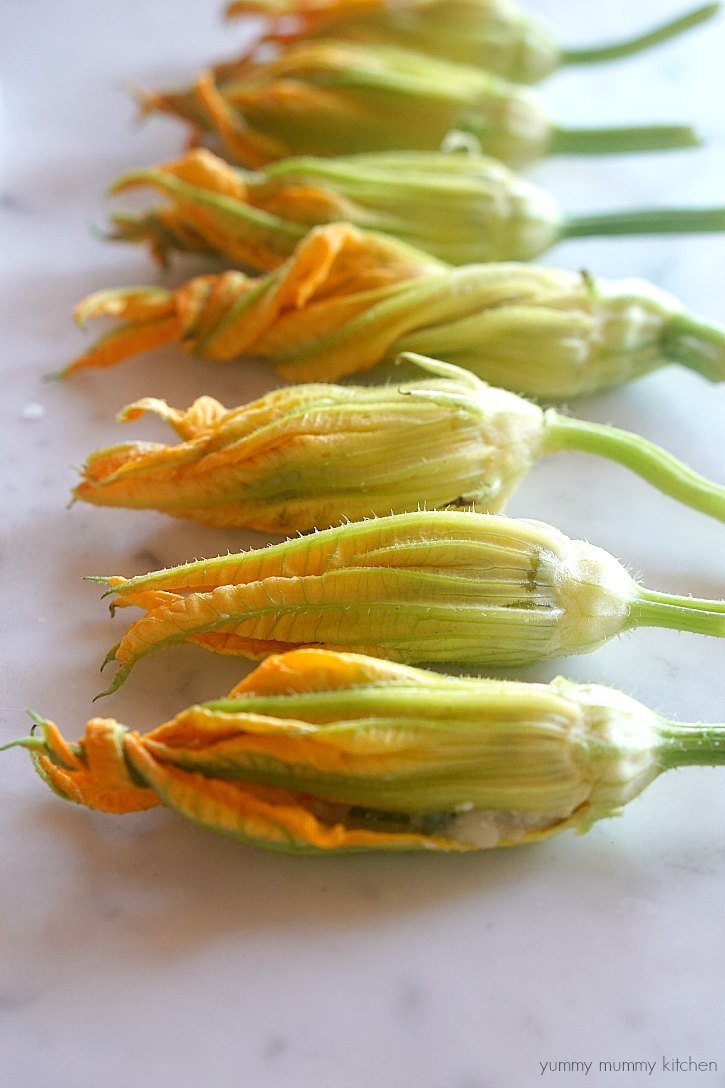 These vegan stuffed zucchini squash blossoms are so delicious and beautiful.