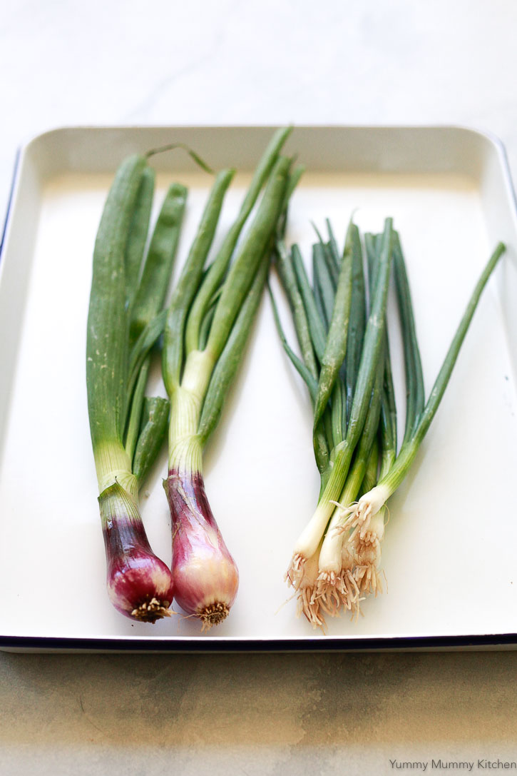 bunches of spring onions and green onions or scallions so you can see the difference between the two.